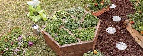 build  hexagon planter