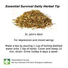 herbs for mood swings 1000 images about st john s wort naistepuna on