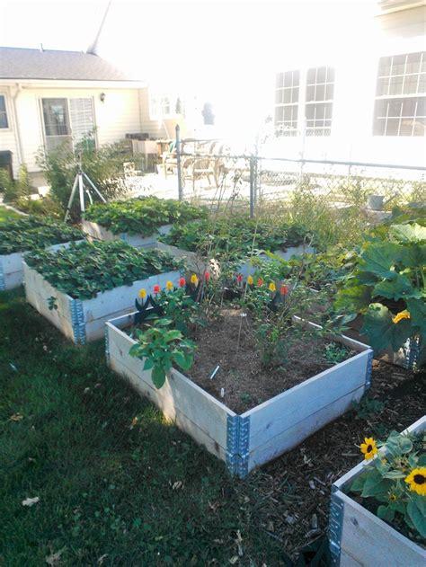 Pinterest Raised Garden Beds - raised beds garden pinterest
