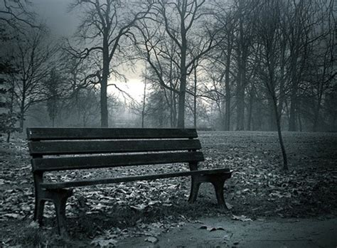 lonely bench lonely bench in a foggy park lonely bench pinterest