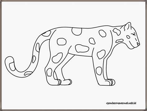 gambar bintang harimau  mewarnai  pinterest