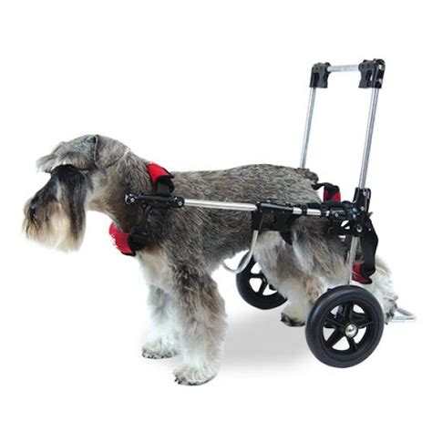silla ruedas para perros silla de ruedas para perros canis mobile ortopedia para