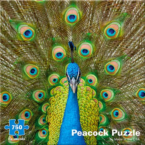3d Puzzle Peacock peacock jigsaw puzzle puzzlewarehouse