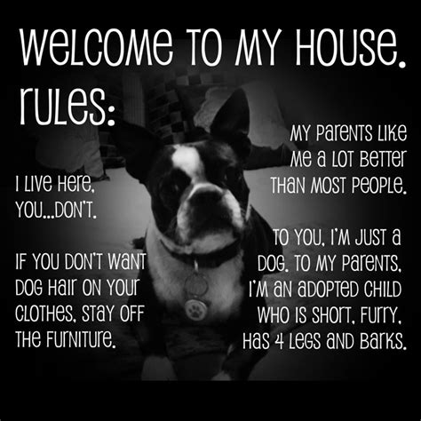 welcome my house welcome to my house rules i live here you don t my parents like me a lot better than