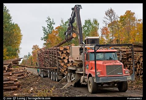truck maine picture photo logging truck loaded by log loader truck
