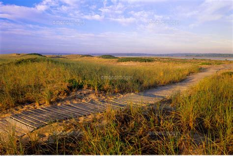 Chappaquiddick Martha S Vineyard Boardwalk Chappaquiddick Island Martha S Vineyard Massachuse 20025133641 写真素材 ストックフォト 画像 イラスト