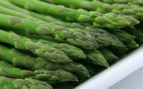 Asparagus: Planting, Growing and Harvesting Asparagus