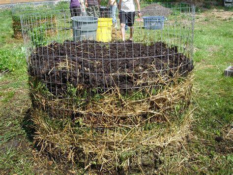 home composting turning food waste into gardening gold