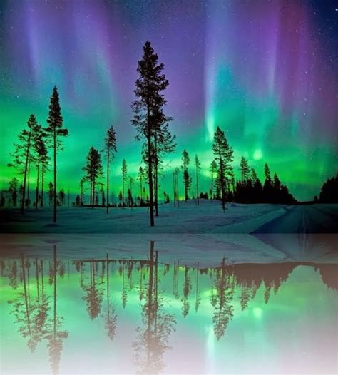 When Are The Northern Lights In Alaska by Northern Lights Alaska Nature At Its Finest