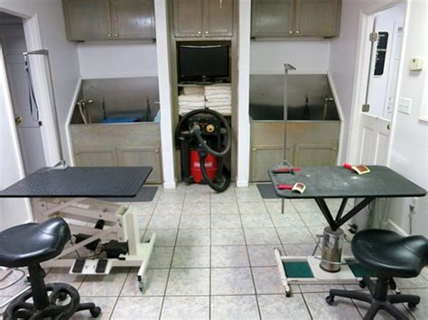 groom room grooming room randenn kennels grooming