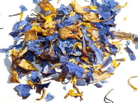 blue lotus flower tea recipes for blue lotus flowers harmony herbals