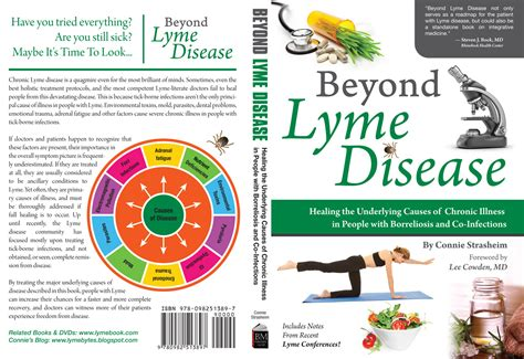 lyme disease takes on medicine books beyond lyme disease new book by connie strasheim
