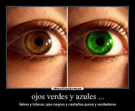 Imagenes De Ojos Verdes Y Azules | ojos verdes y azules desmotivaciones