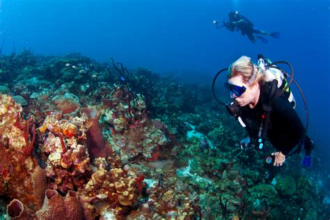dive destinations 4 dive destinations