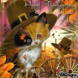happy thanksgiving cats happy thanksgiving cat picture 131151153 blingee com