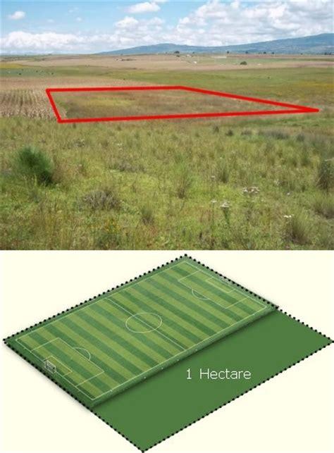 cuantos metros cuadrados tiene una hectarea cuanto mide una hect 225 rea