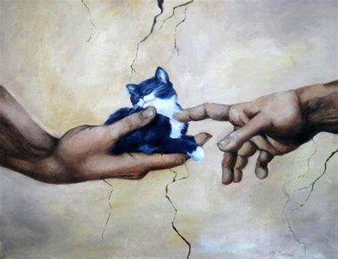 Dijamin Clear St Kitties kittys tryingtoescapethedarkness