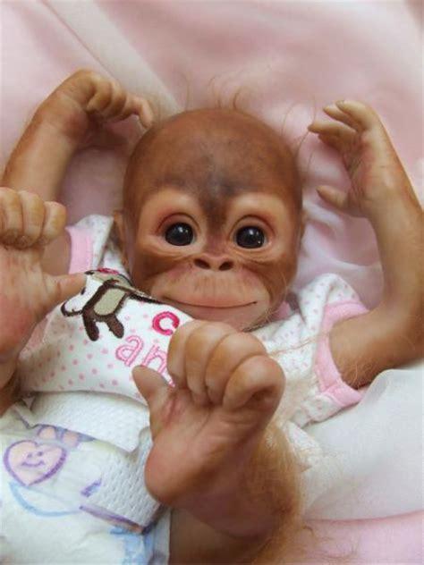 orangutans for sale reborn ooak baby orangutan monkey pratt