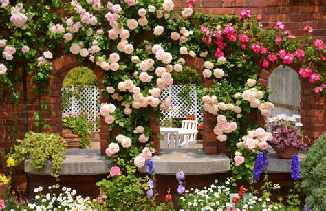 rose themed landscape rose garden desktop background 1750 hostelgarden net