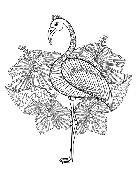 bird mandala coloring pages 20 gorgeous free printable coloring pages bird
