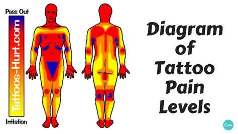 tattoo pain levels diagram of hotspots chart alltop viral