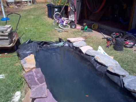 backyard catfish farming back yard fish farm ponds