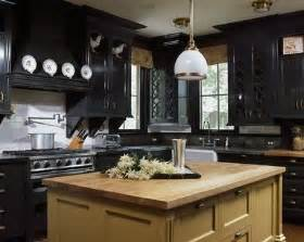 kitchen ideas black cabinets black kitchen cabinets with stainless steel appliances