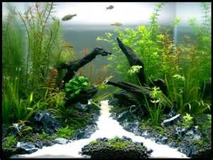 Substrate Aquascape by Tank Aqua One 30cm Cube Substrate Up Aqua Soil Filter