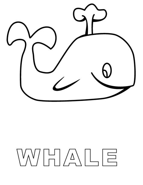 whale color pages coloring home