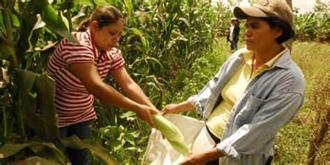 imagenes mujeres rurales cultiva un futuro mejor para las mujeres rurales parte