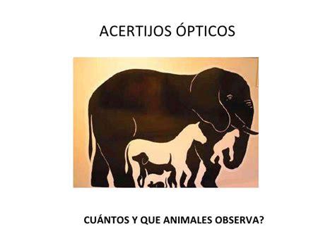 imagenes opticas de animales ilusiones opticas