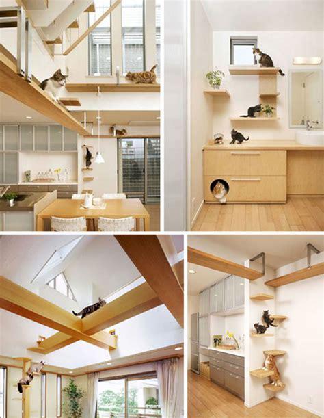 cat friendly home design c 243 mo tener una casa apta para gatos la comuna pink