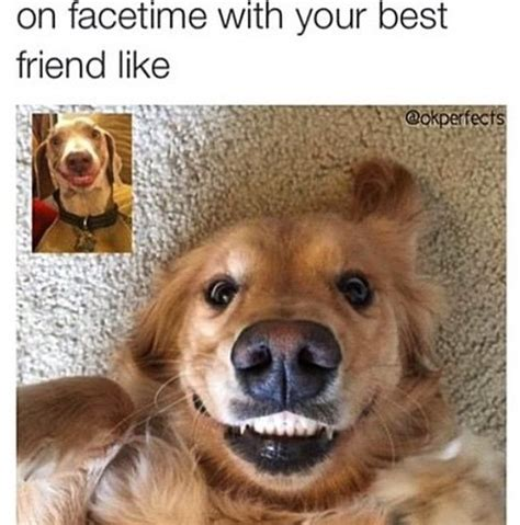 Best Friend Meme - best friend memes popsugar australia tech