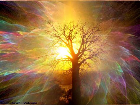 arte e anima splendere di luce propria