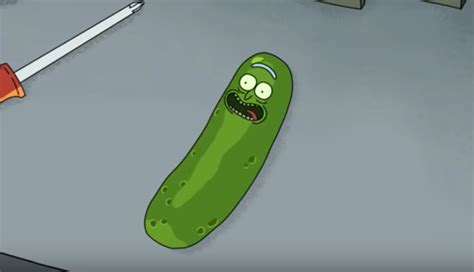 rick and morty episode rick and morty pickle rick season 3 episode 3 review the filtered lens