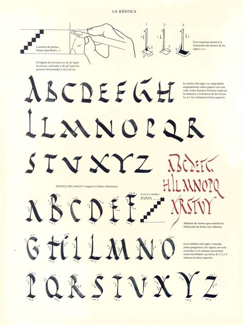 tutorial caligrafia lettering 862 best images about calligraphy mastery of the basics on