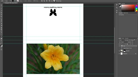 lightroom greeting card template greeting card template and for adobe photoshop
