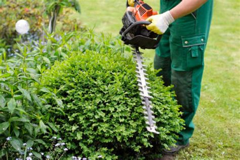 Gardening Services Leicester Gardening Services Garden Services Leicestershire