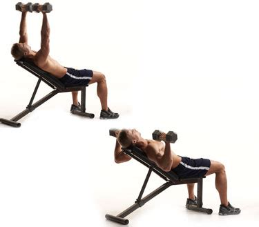 incline bench press with dumbbells imgs for gt dumbbell bench press