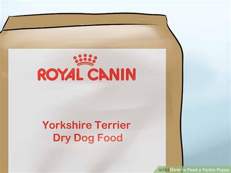 how to feed a yorkie puppy how to feed a yorkie puppy 11 steps with pictures wikihow
