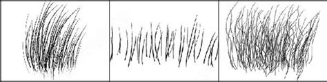 fur pattern brush fur abr photoshop brushes for free download about 4