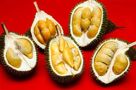 sinnaco durian specialist durian buffet  durian street