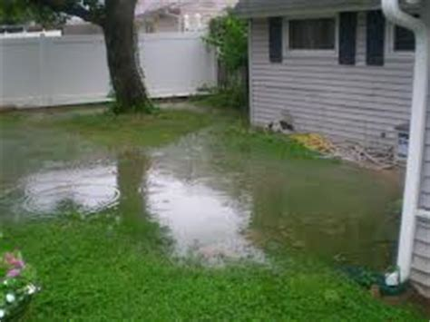 how to stop my backyard from flooding landscape grading real tree demolition melbourne florida