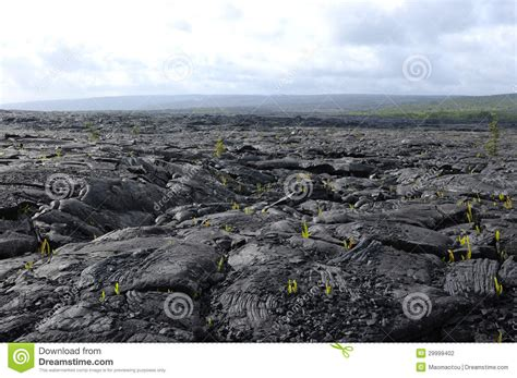 old black land lava land stock photography image 29999402