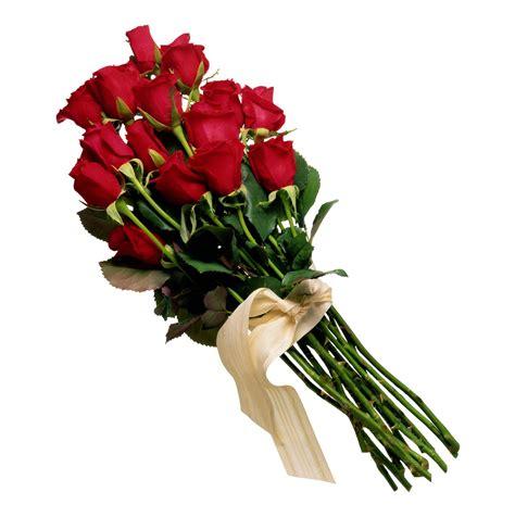 imagenes rosas rojas naturales ramos de flores fotos imagui
