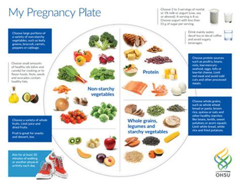 s protein in pregnancy my pregnancy plate prenatal nutrition pregnancy care