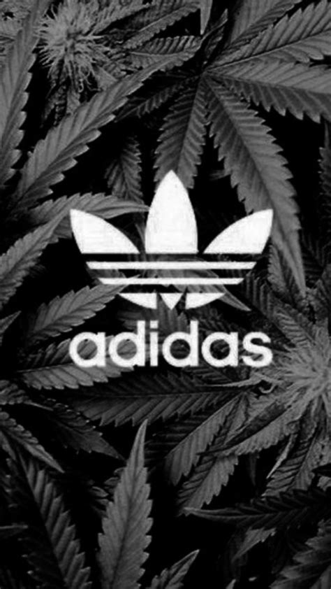 adidas wallpaper weed iphone wallpapers iphone 6 adidas wallpaper 2