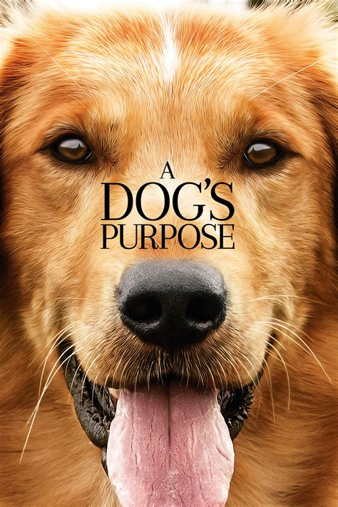 the dogs purpose a s purpose filmnet dk