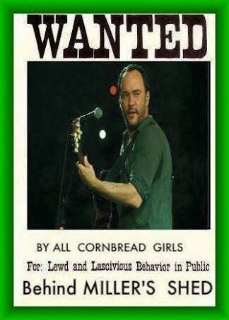 Dave Matthews Band Meme - 1687 best dave matthews band images on pinterest dave