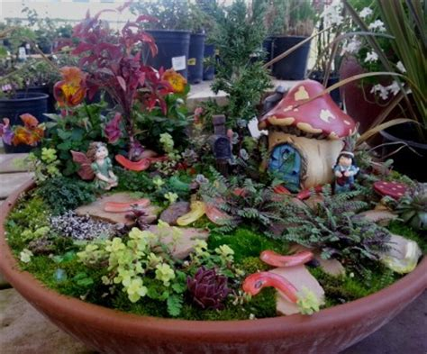 mid city nursery your source for gardening and plant information in napa and solano county